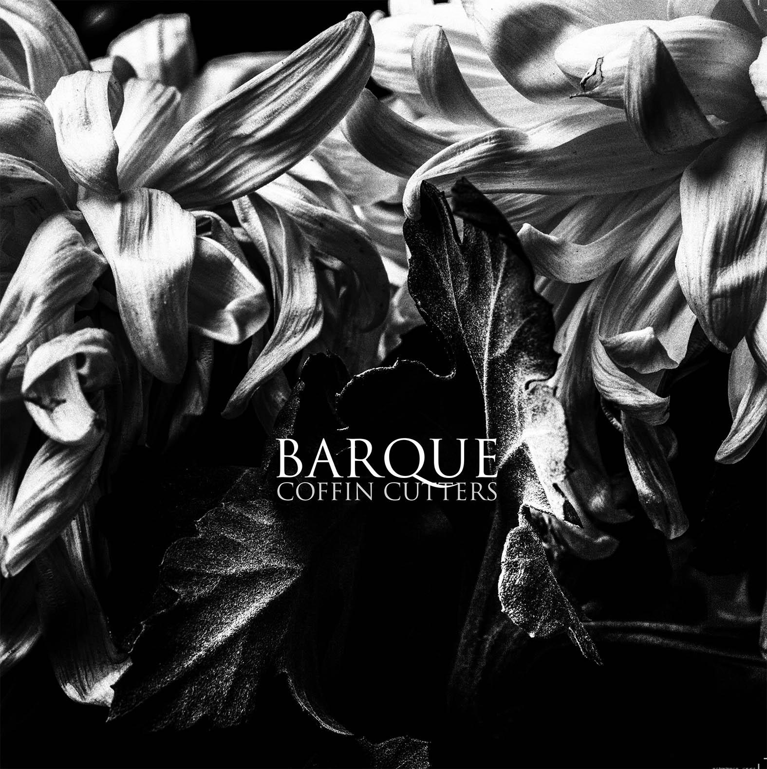 Djavanshir.n _ album cover _BARQUE